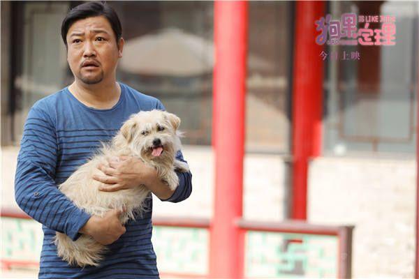 电影《狗果定理》今日欢乐上映 三大看点诠释爱与幸福