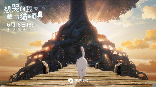 太郎走向神秘的猫岛.jpg