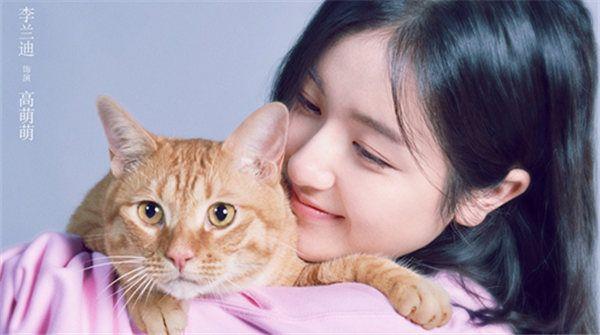 电影《宠爱》定档12.31  李兰迪上演暖心故事