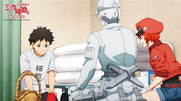 口碑佳作首登大银幕!日本爆款动画《工作细胞》电影版确认引进