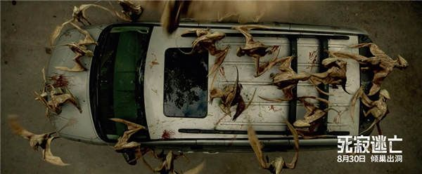 蝠蜂对车内的一家人发起攻击.jpg