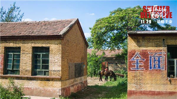 《平原上的夏洛克》华北平原乡村独特地貌引观众期待.jpg
